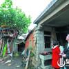 Chiny: 65-latek mieszka w domku na drzewie