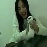 rabbit-crusher-huang-xiaoxiao-560x373