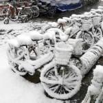 snow_0