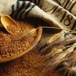 wheat-grains