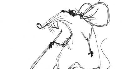 Photo of Chiny jako Ślepa Mysz,