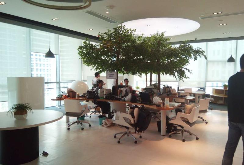 Wnętrze jednego z inkubatorów w Guangzhou/Nansha