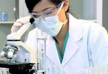 Photo of Cathay Biotech zainwestuje prawie 600 milionów dolarów, by kukurydzą zastąpić ropę naftową